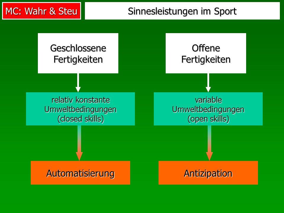 Sinnesleistungen im Sport