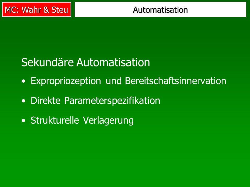Sekundäre Automatisation