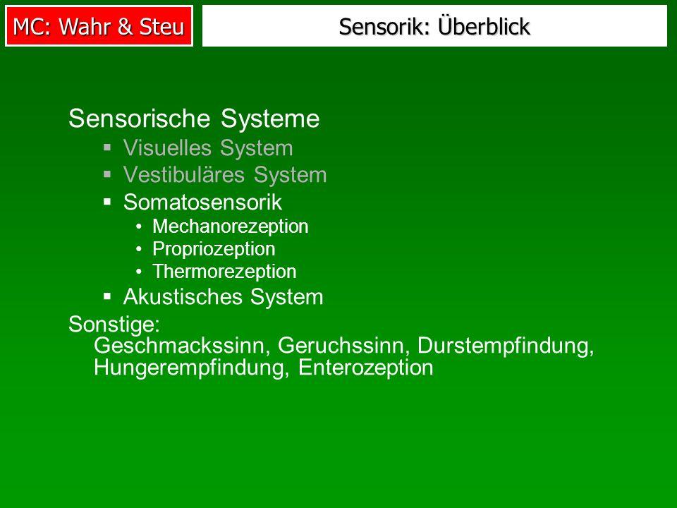 Sensorische Systeme Sensorik: Überblick Visuelles System