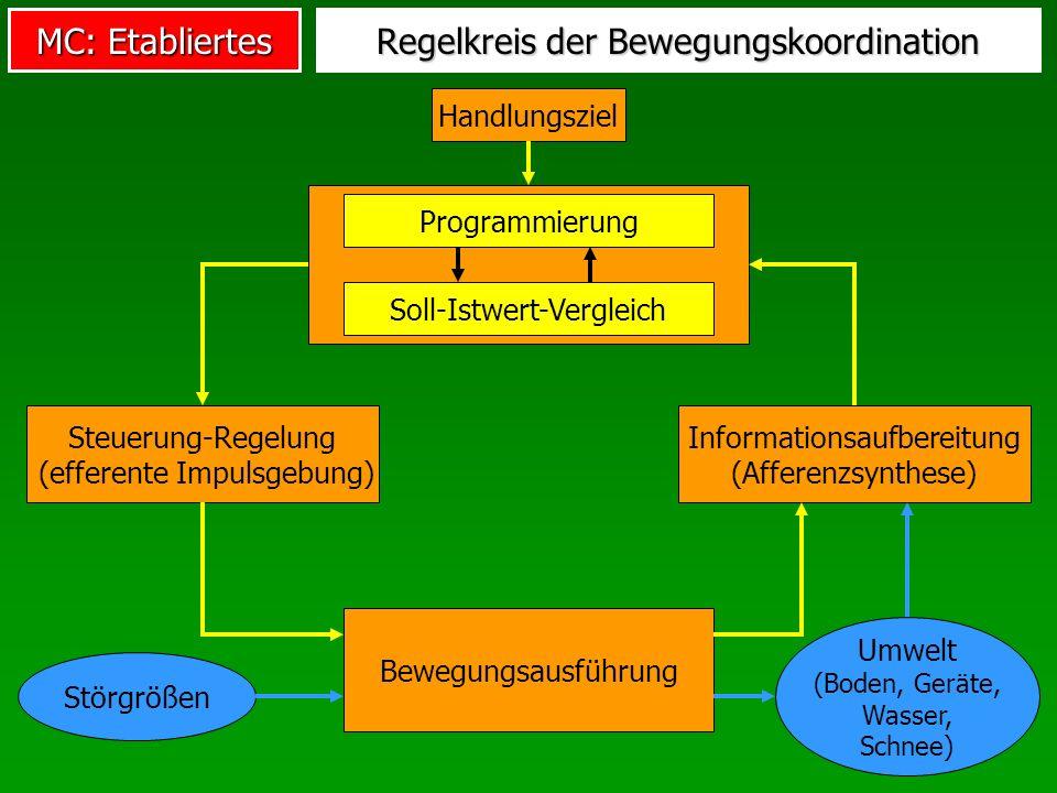 Regelkreis der Bewegungskoordination