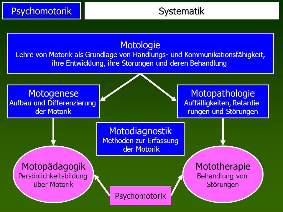 Motogenese Aufbau und Differenzierung der Motorik
