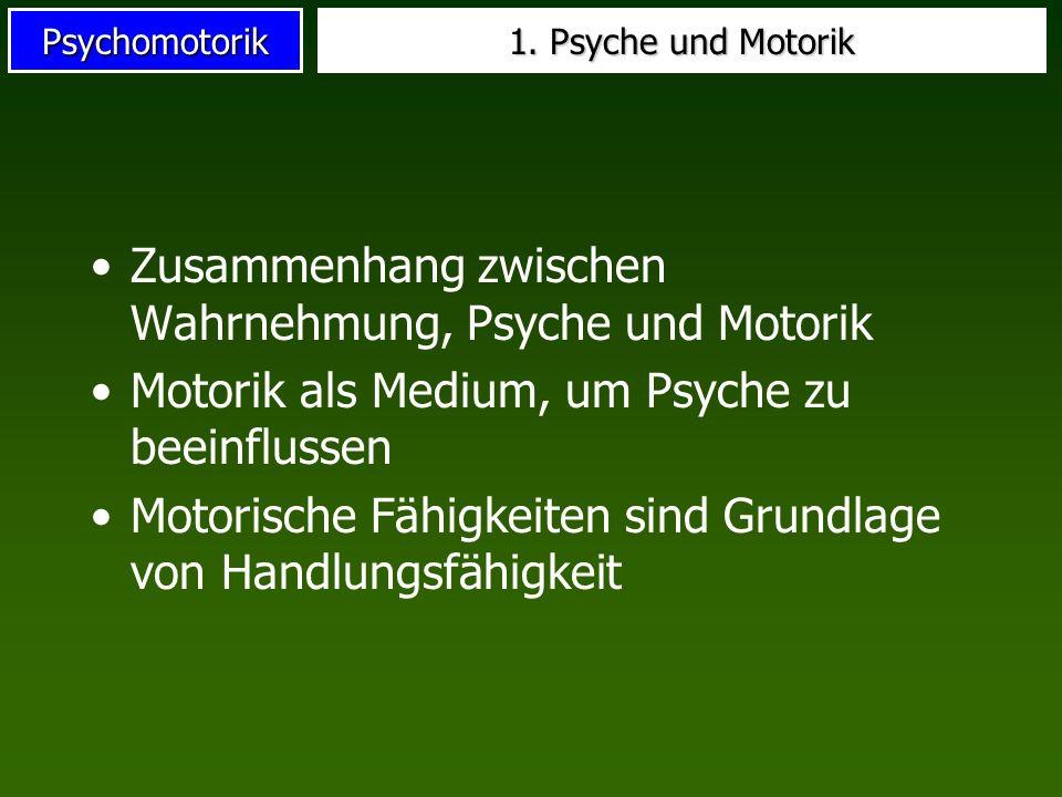 Zusammenhang zwischen Wahrnehmung, Psyche und Motorik