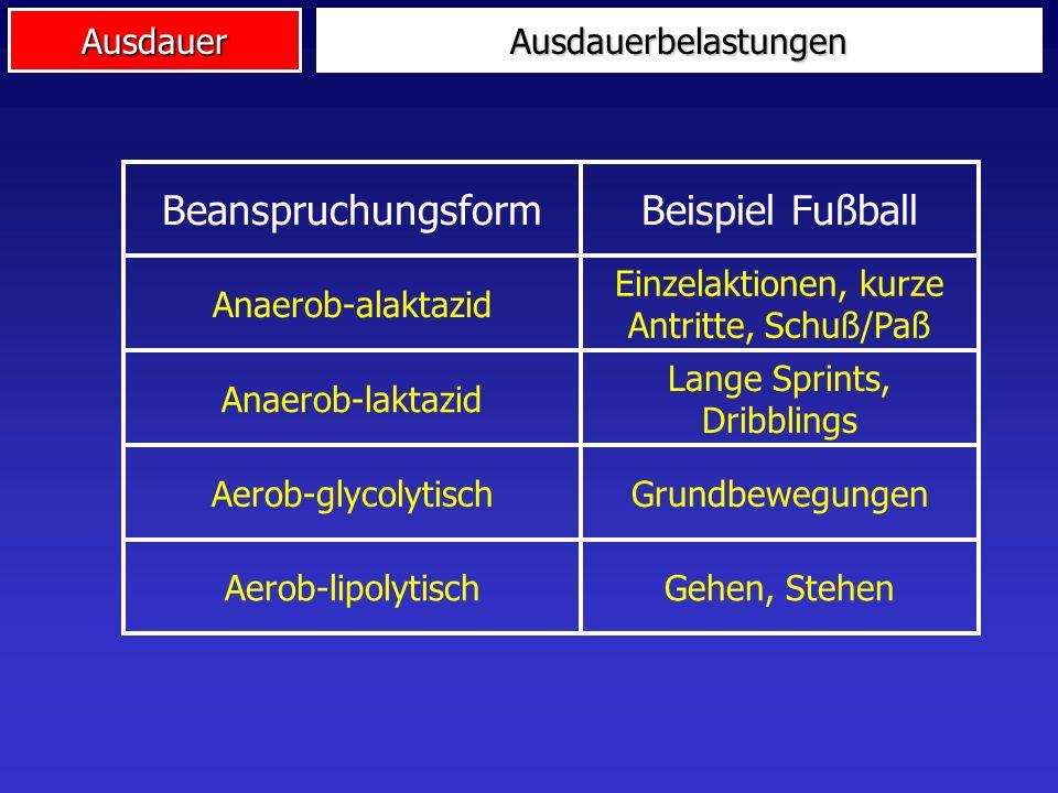 Beispiel Fußball Beanspruchungsform Ausdauerbelastungen