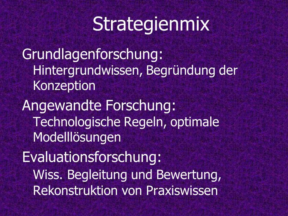 Strategienmix Grundlagenforschung: Hintergrundwissen, Begründung der Konzeption.