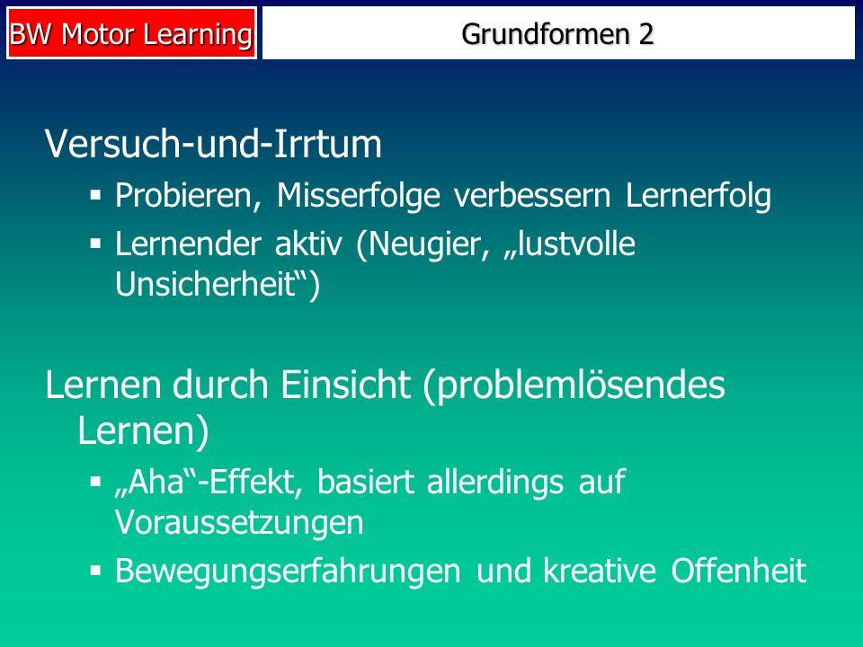 Lernen durch Einsicht (problemlösendes Lernen)