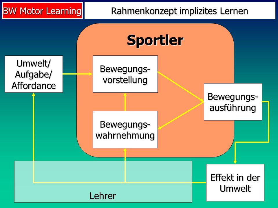 Rahmenkonzept implizites Lernen