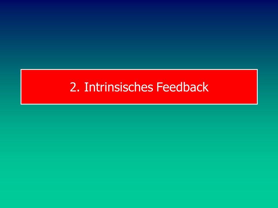 2. Intrinsisches Feedback