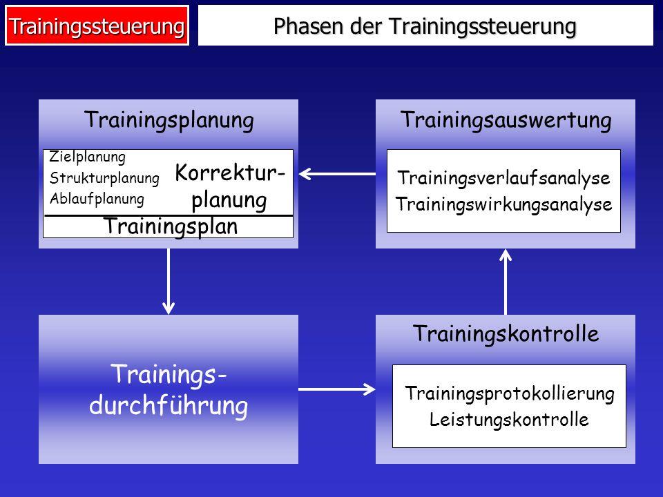 Phasen der Trainingssteuerung