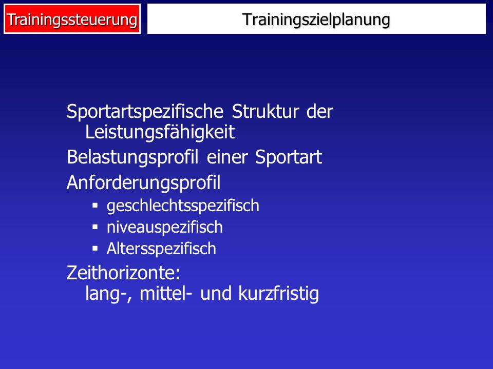 Trainingszielplanung