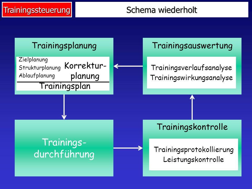 Trainings- durchführung