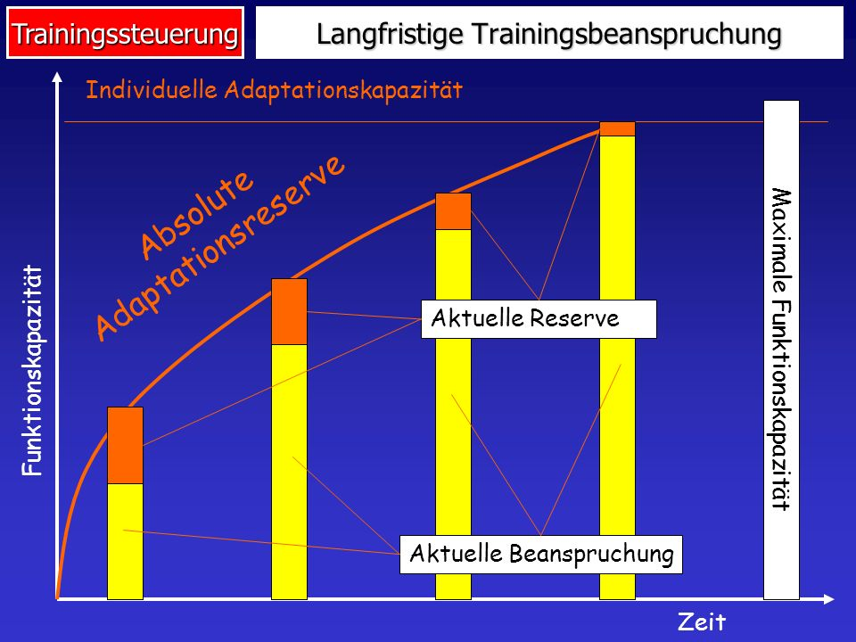 Langfristige Trainingsbeanspruchung