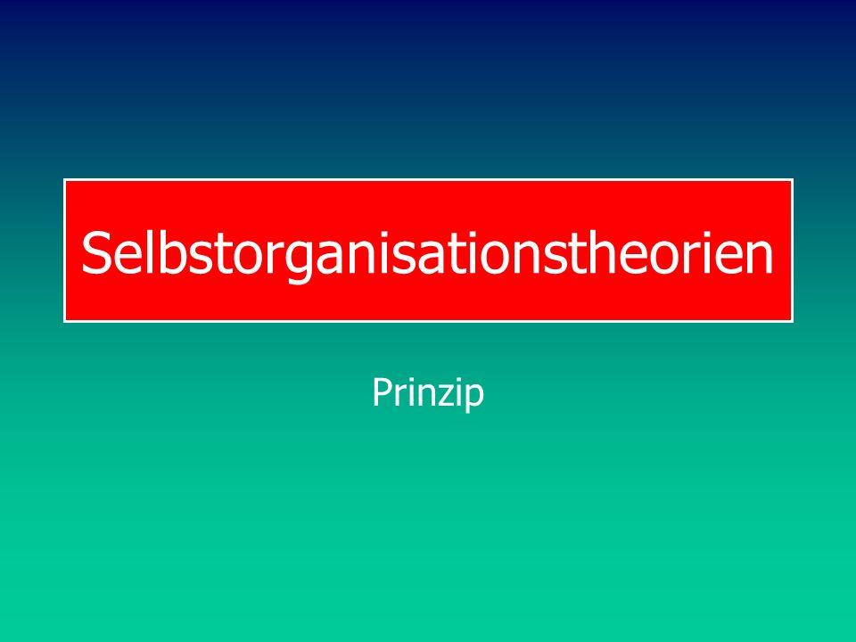 Selbstorganisationstheorien
