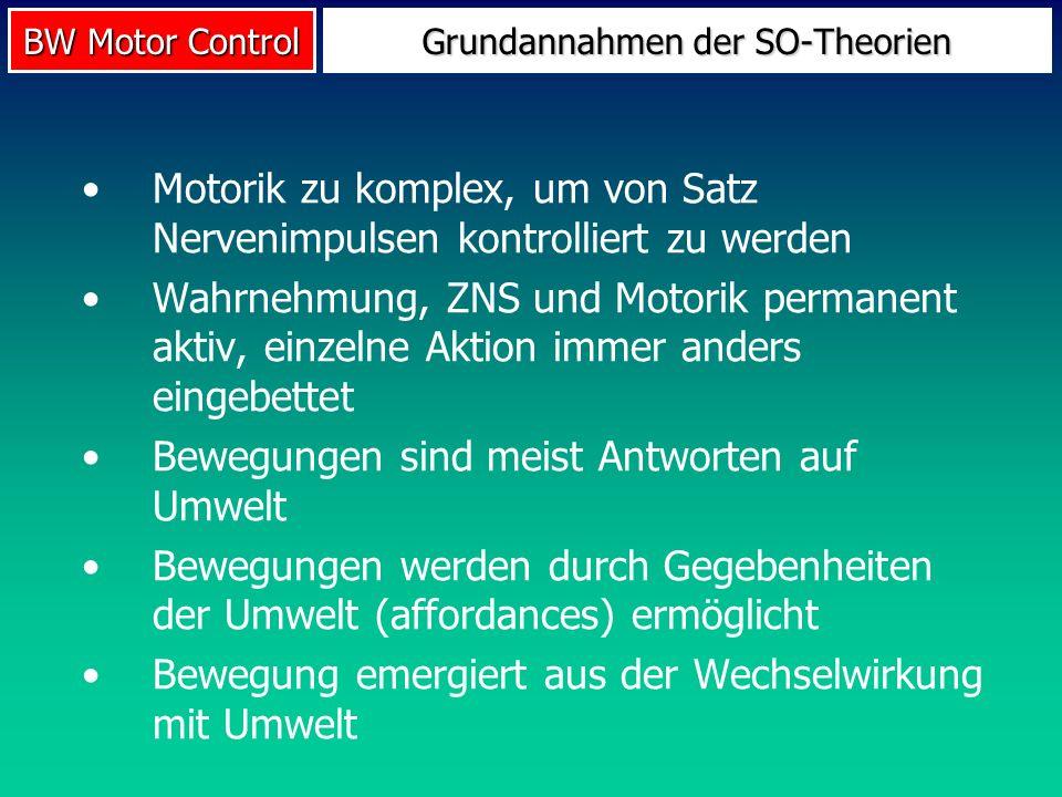 Grundannahmen der SO-Theorien