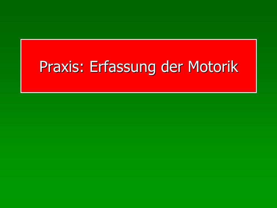 Praxis: Erfassung der Motorik