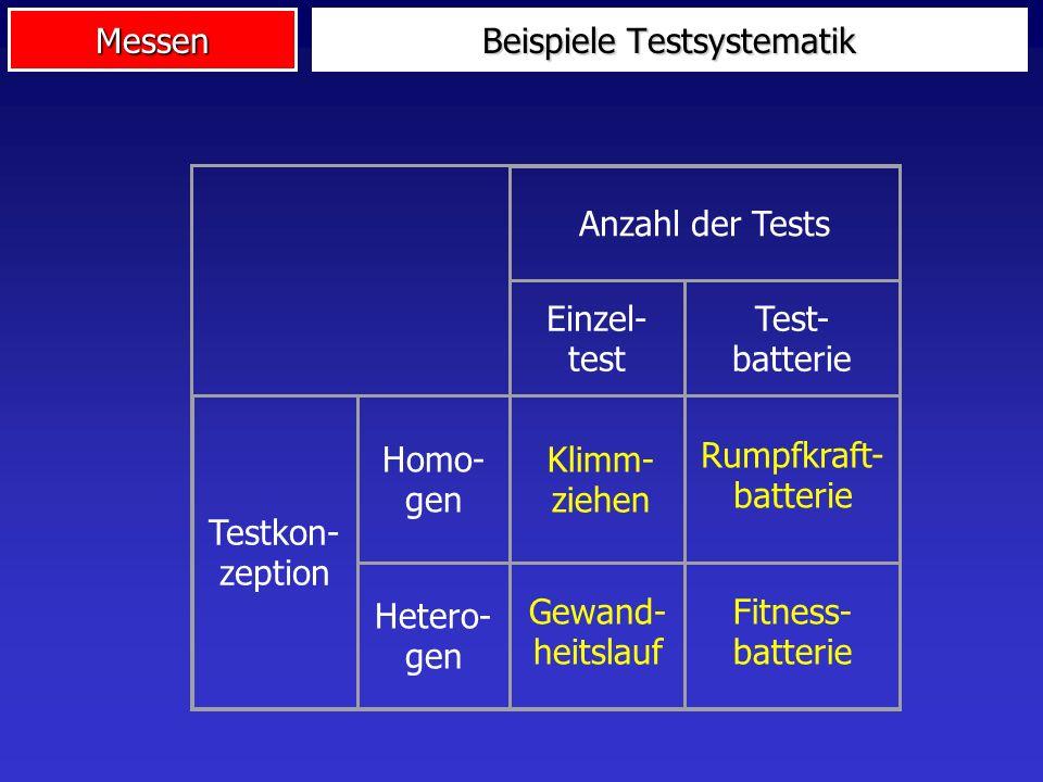 Beispiele Testsystematik