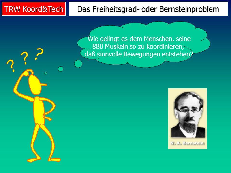 Das Freiheitsgrad- oder Bernsteinproblem