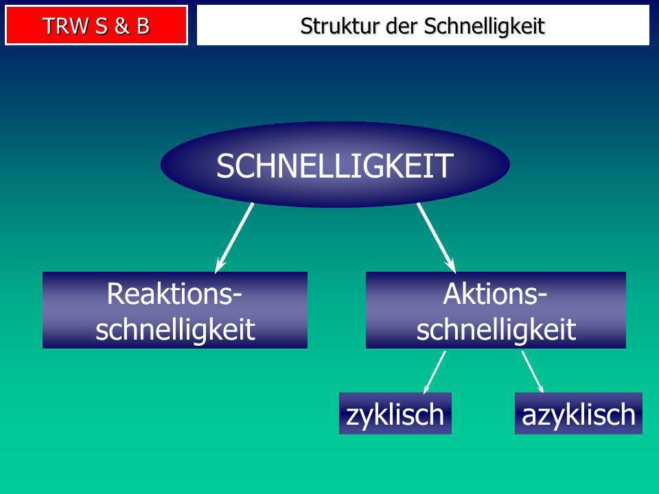 Struktur der Schnelligkeit