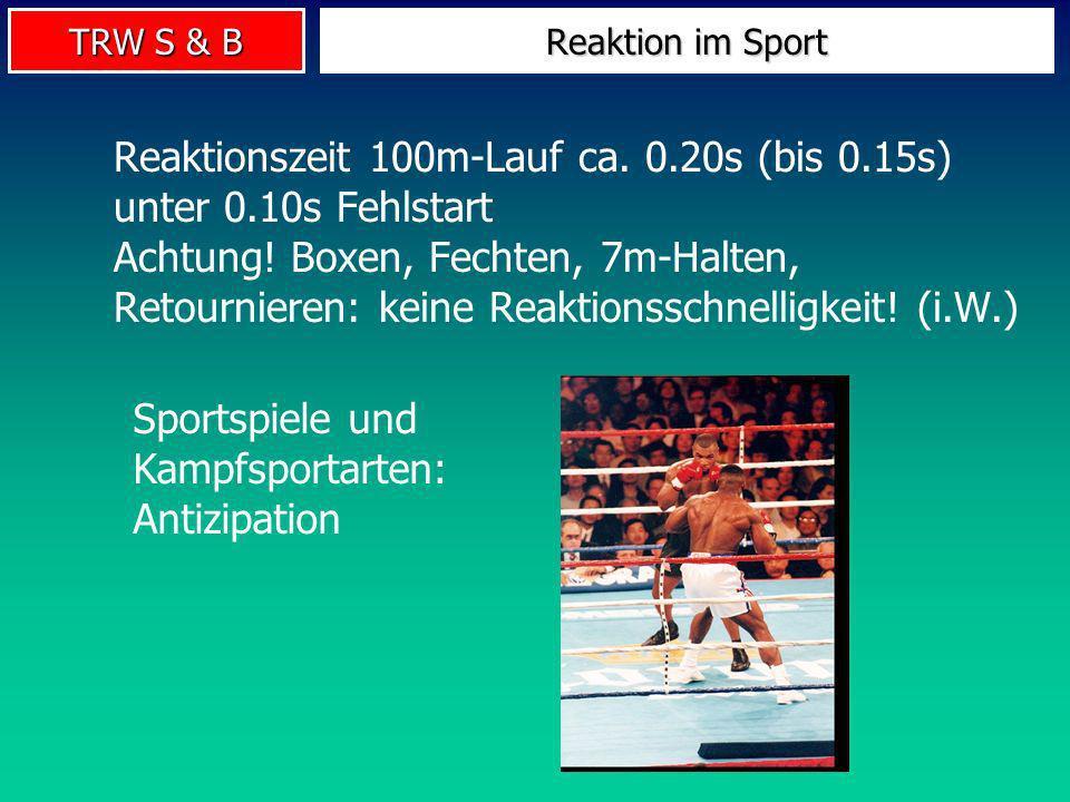Sportspiele und Kampfsportarten: Antizipation