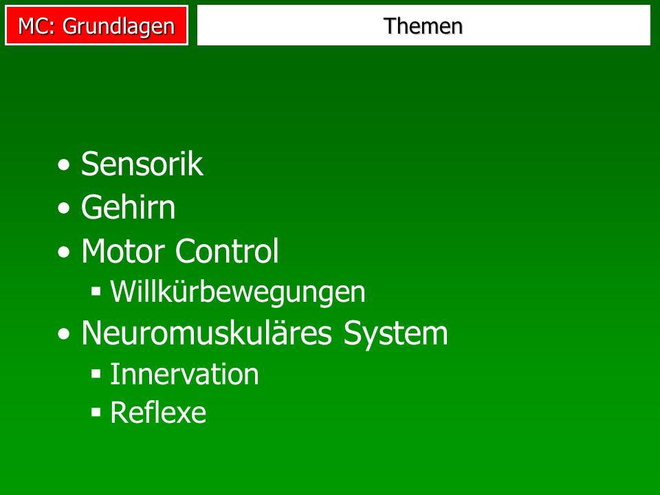 Neuromuskuläres System