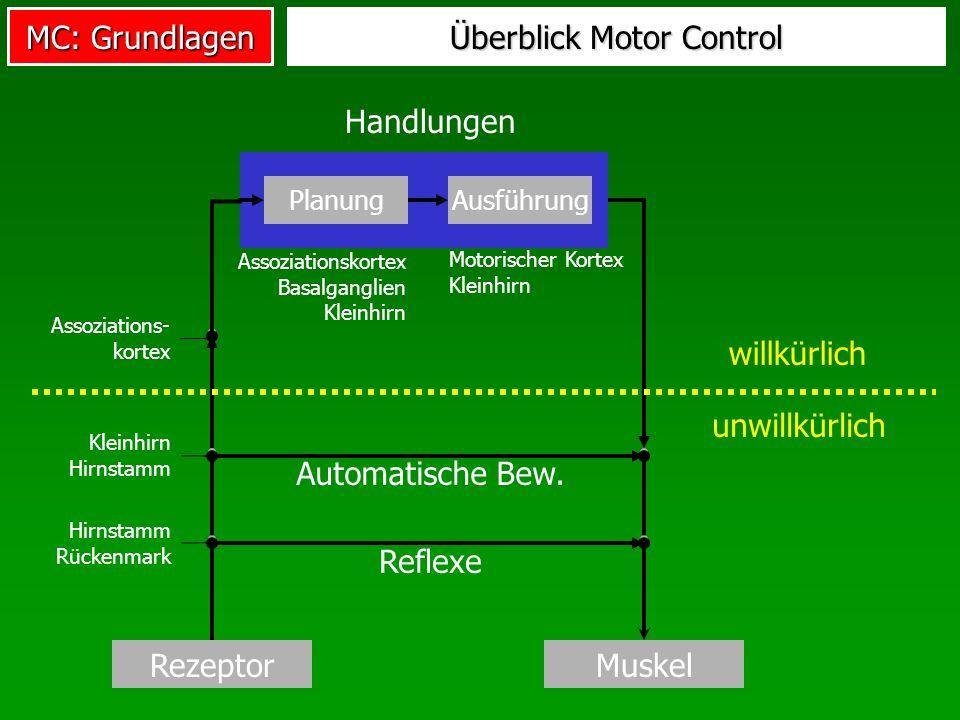Überblick Motor Control
