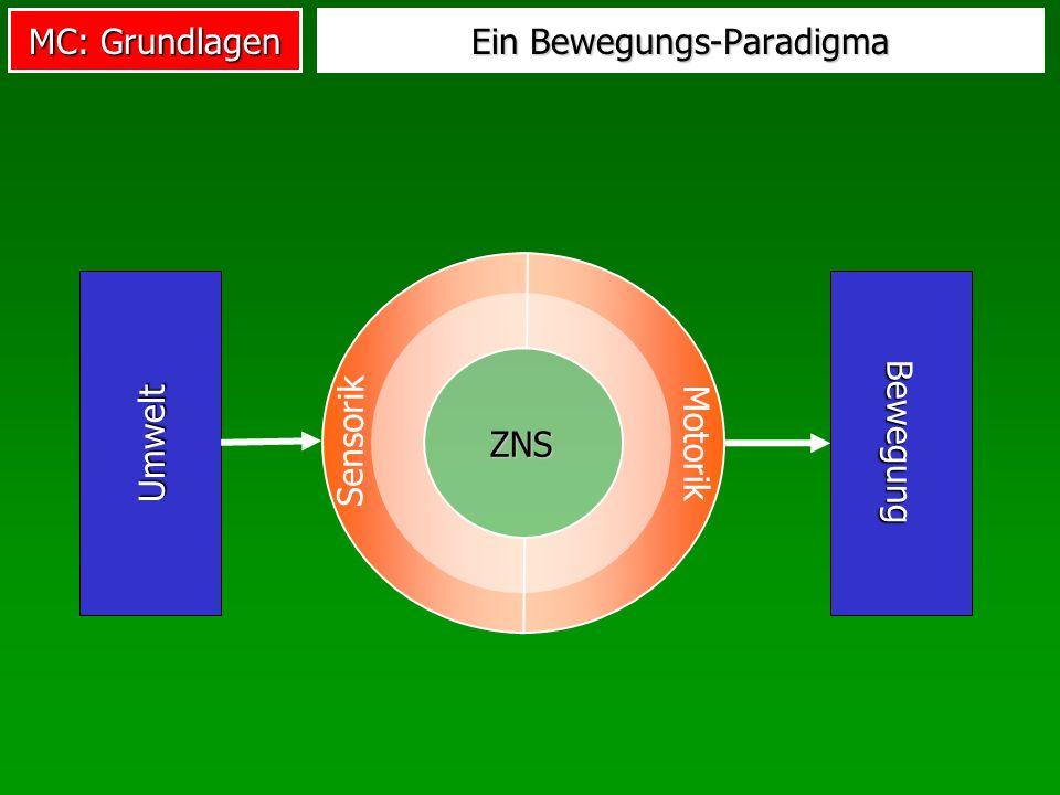Ein Bewegungs-Paradigma