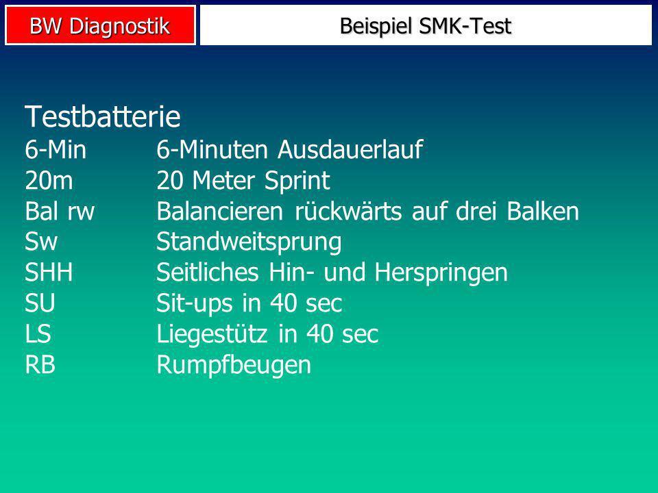 Testbatterie 6-Min 6-Minuten Ausdauerlauf 20m 20 Meter Sprint