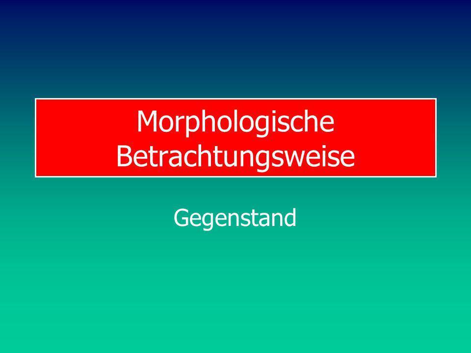 Morphologische Betrachtungsweise