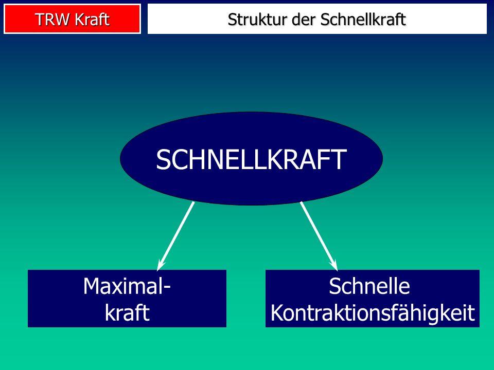Struktur der Schnellkraft