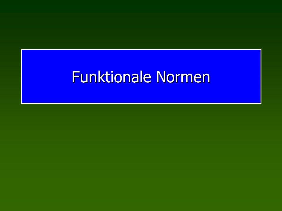 Funktionale Normen