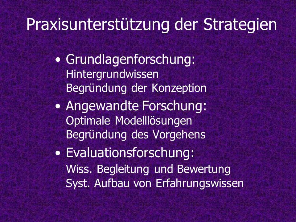 Praxisunterstützung der Strategien