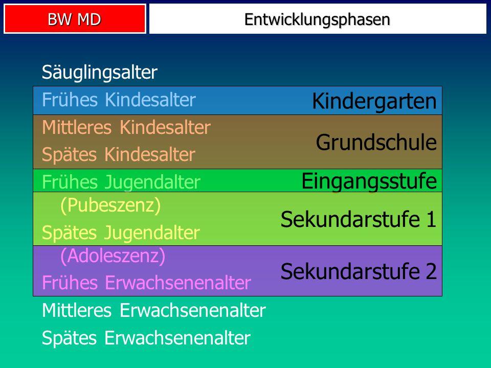 Kindergarten Grundschule Eingangsstufe Sekundarstufe 1 Sekundarstufe 2