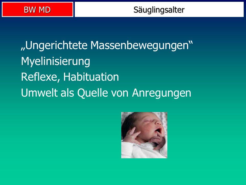 """""""Ungerichtete Massenbewegungen Myelinisierung Reflexe, Habituation"""