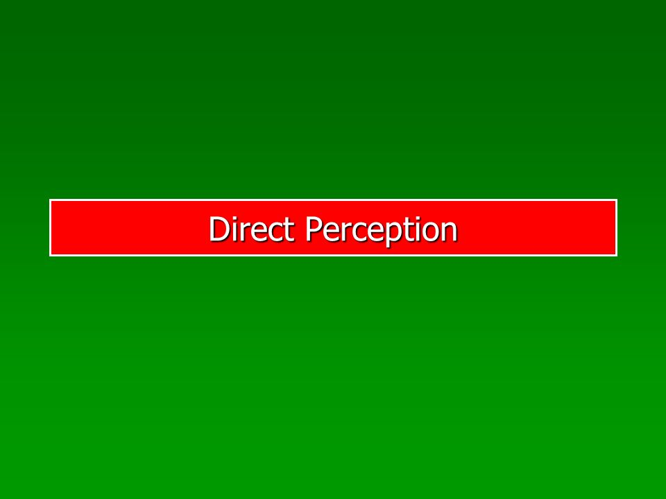Direct Perception