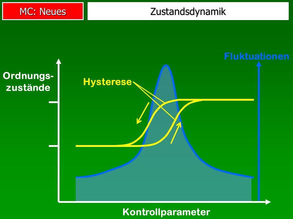 Zustandsdynamik Fluktuationen Kontrollparameter Ordnungs- zustände Hysterese