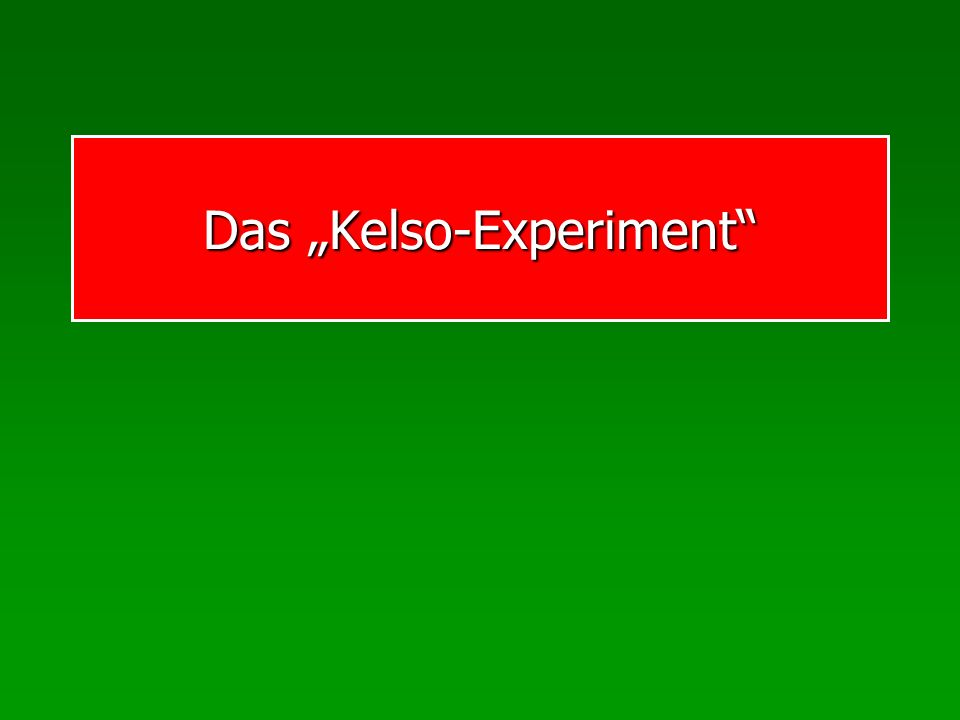 "Das ""Kelso-Experiment"