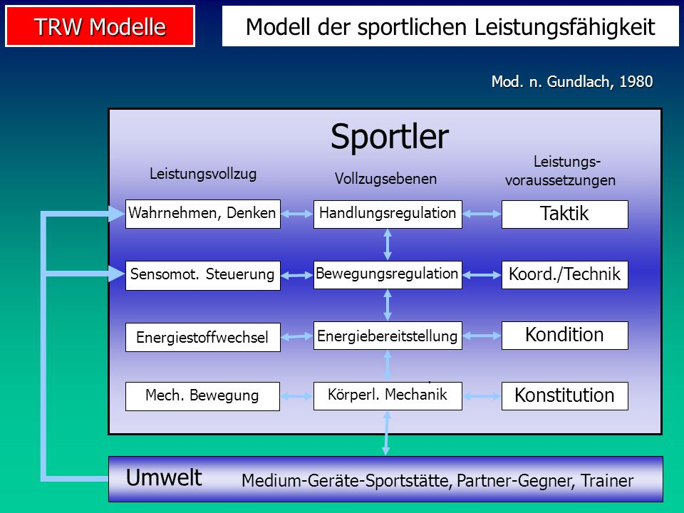 Sportler Modell der sportlichen Leistungsfähigkeit Umwelt Taktik
