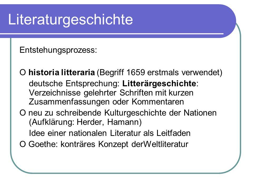 Literaturgeschichte Entstehungsprozess: