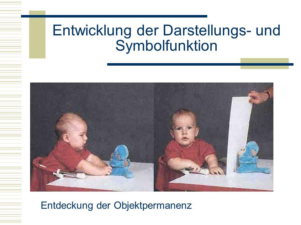 Entwicklung der Darstellungs- und Symbolfunktion