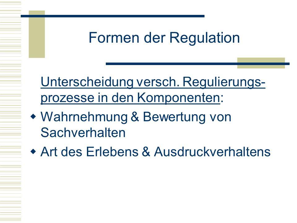 Formen der RegulationUnterscheidung versch. Regulierungs-prozesse in den Komponenten: Wahrnehmung & Bewertung von Sachverhalten.