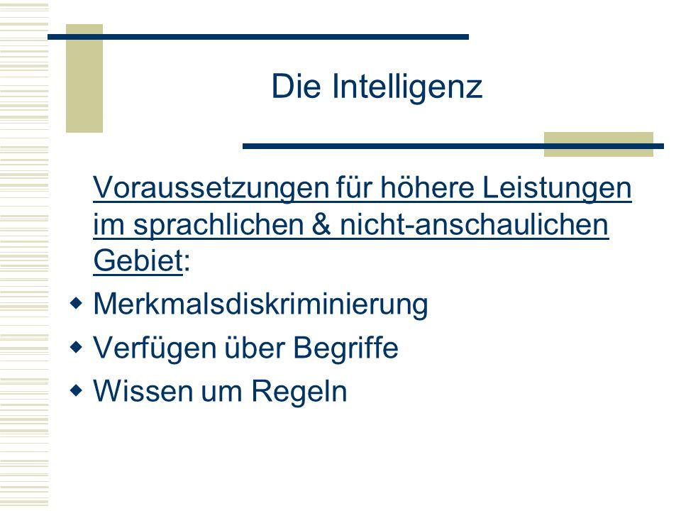 Die Intelligenz Voraussetzungen für höhere Leistungen im sprachlichen & nicht-anschaulichen Gebiet: