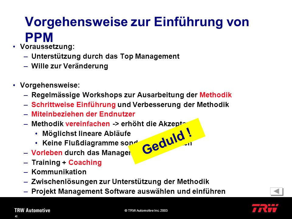 Vorgehensweise zur Einführung von PPM