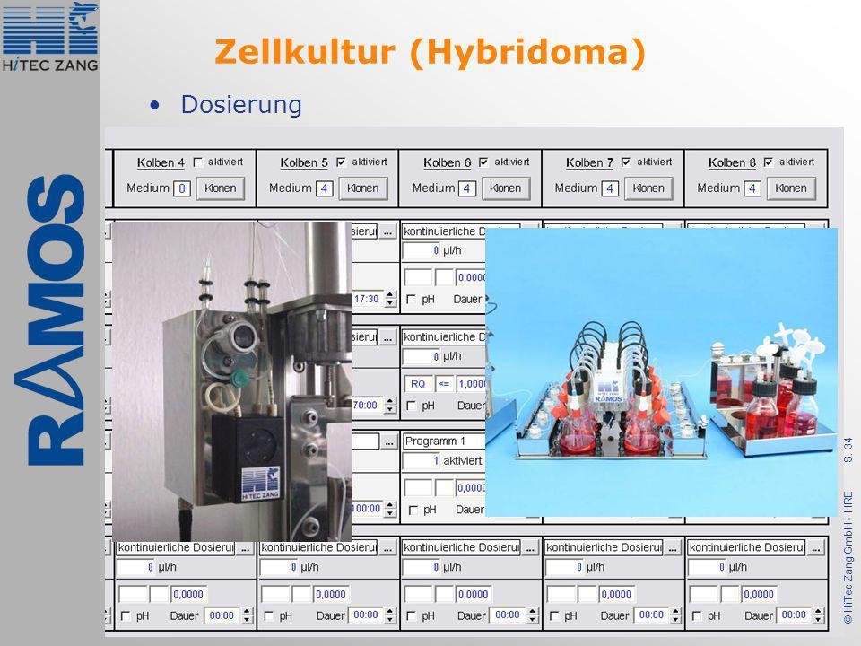 Zellkultur (Hybridoma)