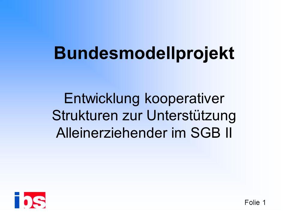 Bundesmodellprojekt Entwicklung kooperativer Strukturen zur Unterstützung Alleinerziehender im SGB II.