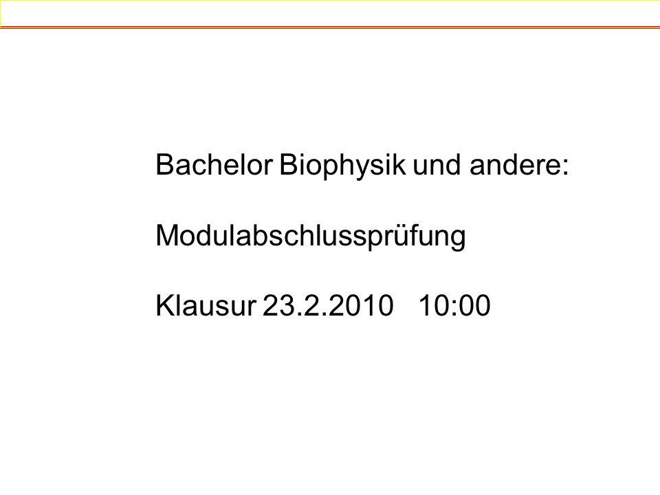 Bachelor Biophysik und andere: