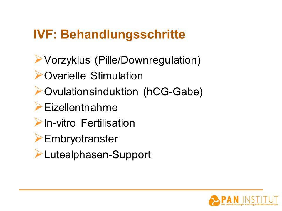 IVF: Behandlungsschritte