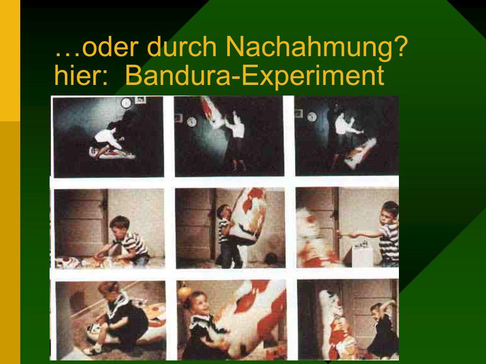 …oder durch Nachahmung hier: Bandura-Experiment