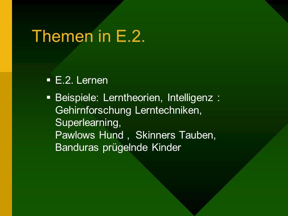 Themen in E.2. E.2. Lernen.