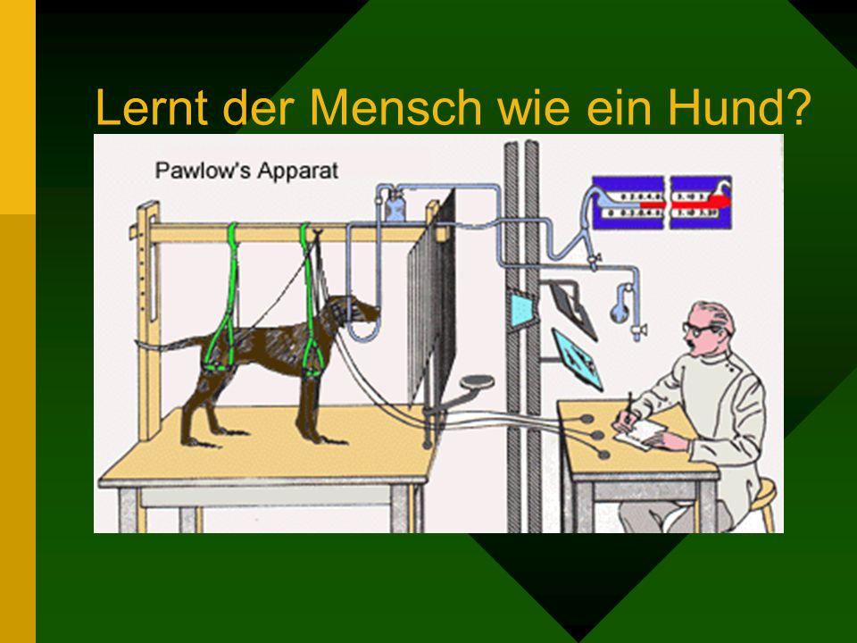 Lernt der Mensch wie ein Hund