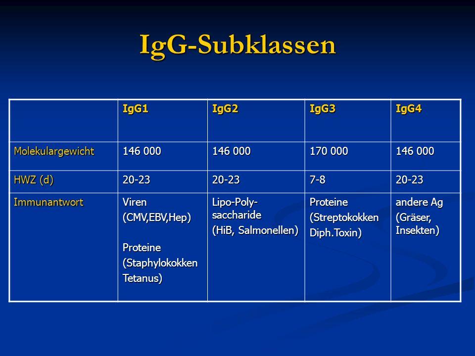 IgG-Subklassen IgG1 IgG2 IgG3 IgG4 Molekulargewicht 146 000 170 000