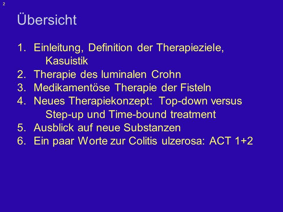 Übersicht Einleitung, Definition der Therapieziele, Kasuistik